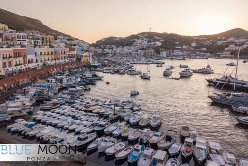 blue moon ristorante a ponza affaccio porto